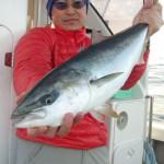 初乗船の加藤さんはメジロ4匹げっと おめでとうございます♪ 有難うございました。